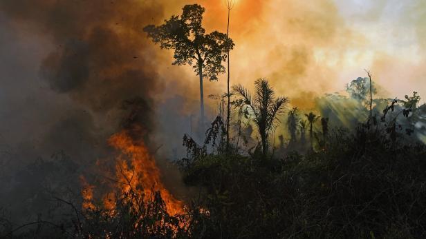 FILES-BRAZIL-ENVIRONMENT-FIRE
