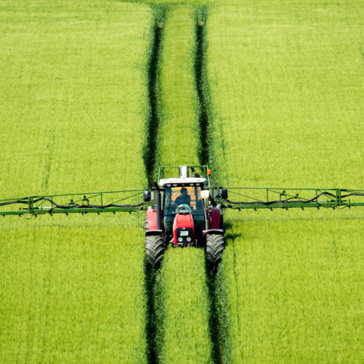 Nitratbelastung: Grundwasser muss laut EuGH geschützt werden