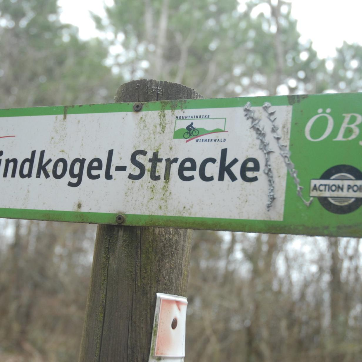 Singles Heiligenkreuz Im Wienerwald, Kontaktanzeigen aus