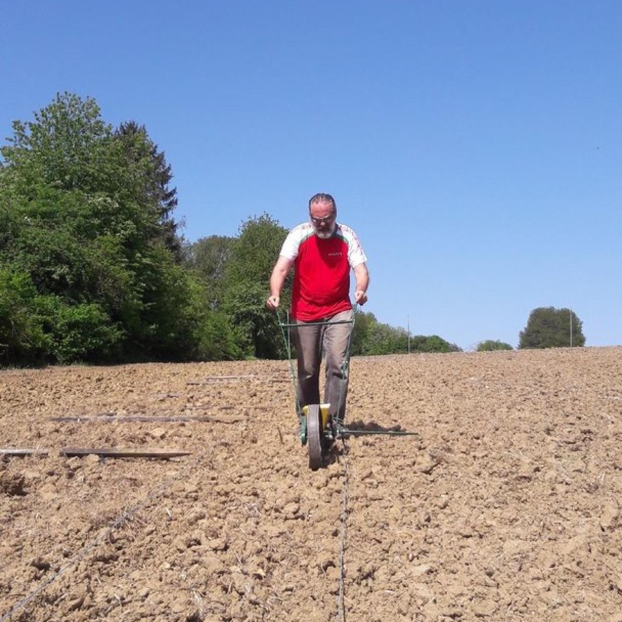 Gablitz: Trotz eigener Gärten wird Gemüse am Feld angebaut