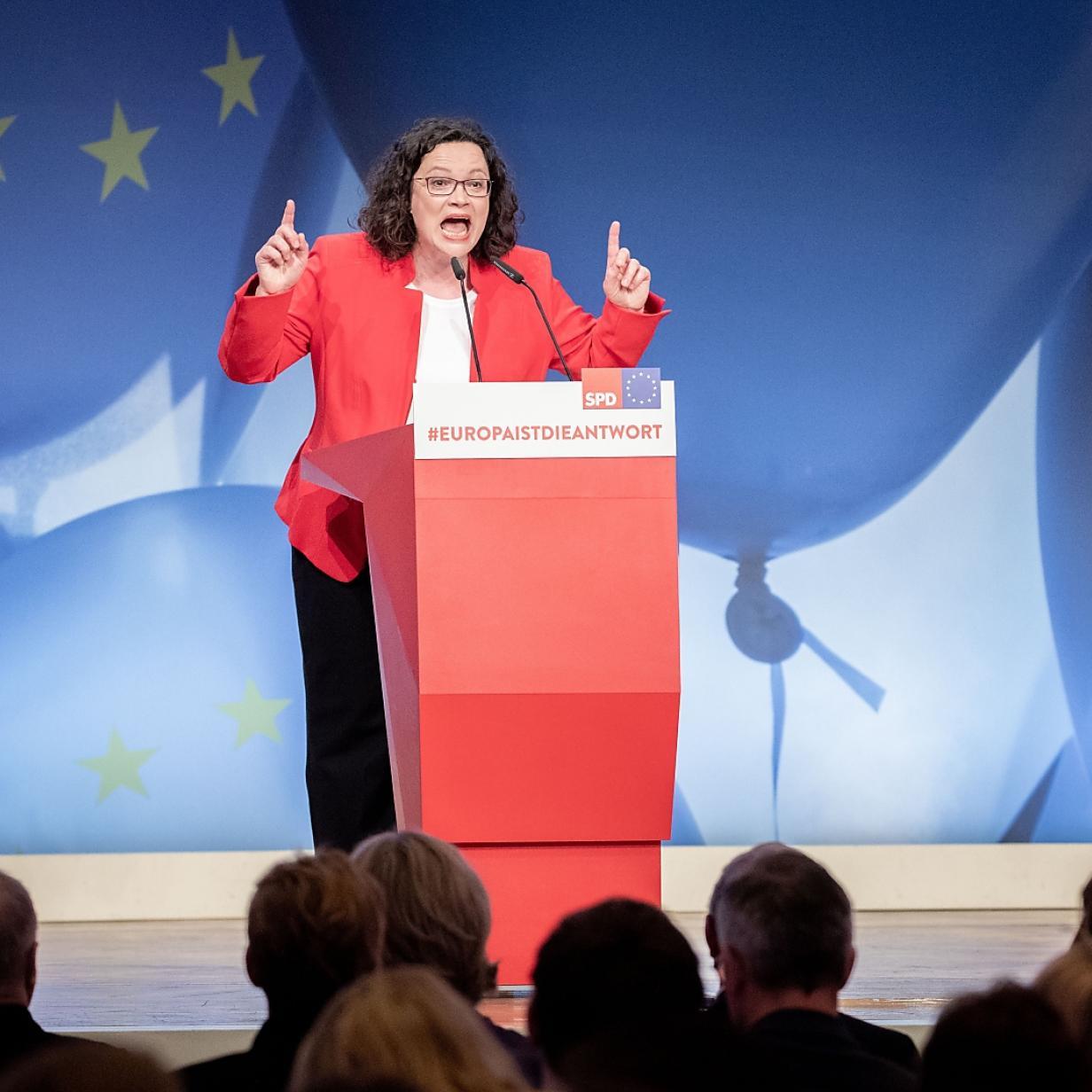 SPD und deutsche Grüne fordern Neuwahlen in Österreich