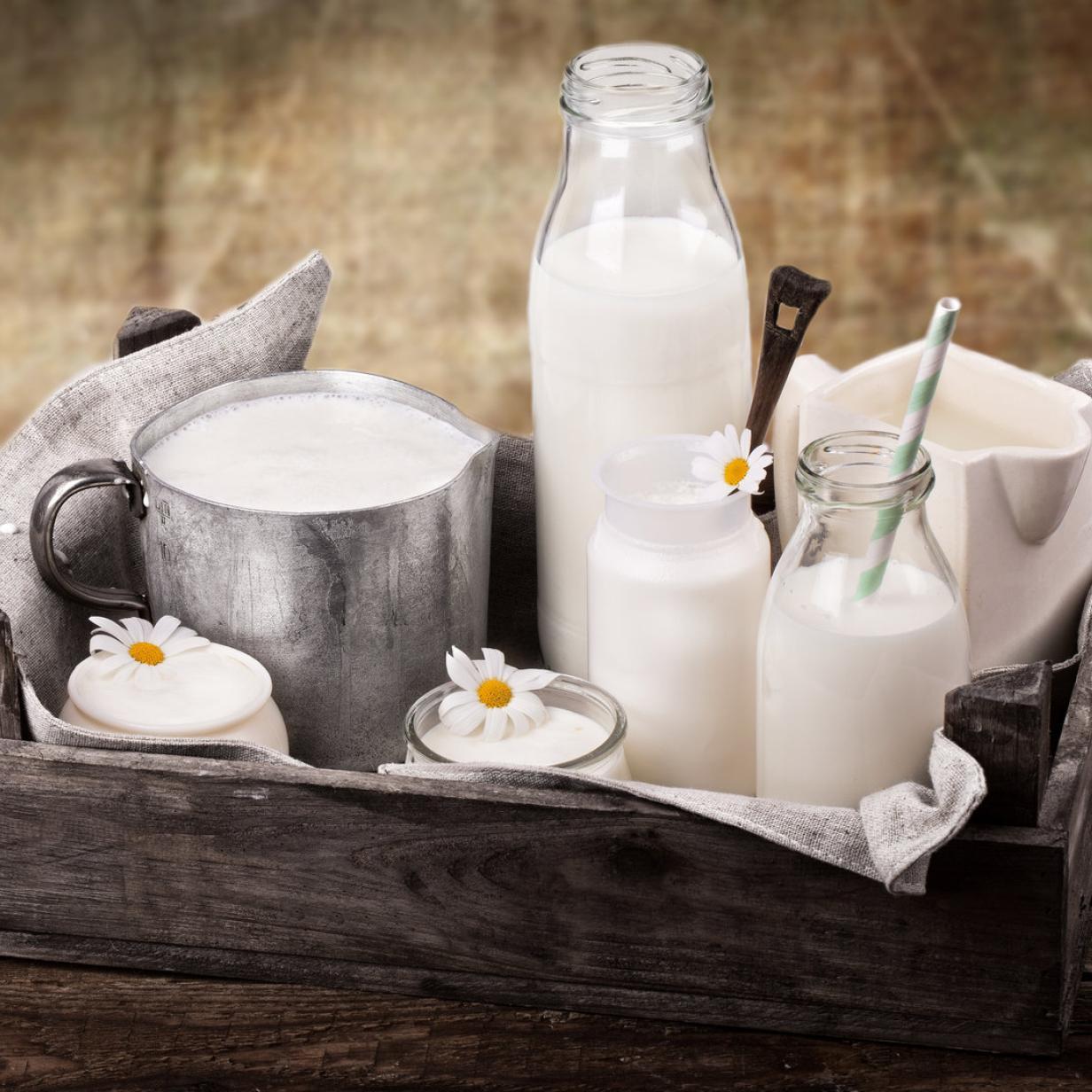 """Bald jeder fünfte Liter Milch in Österreich ist """"Bio"""""""