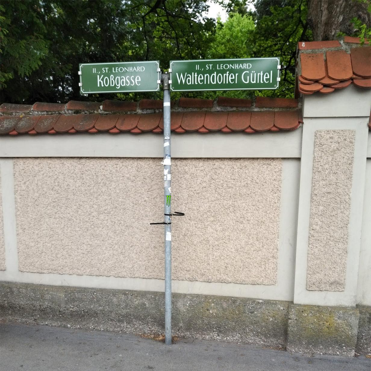 Singles Party Graz Waltendorf, Anlsse Wels-Land