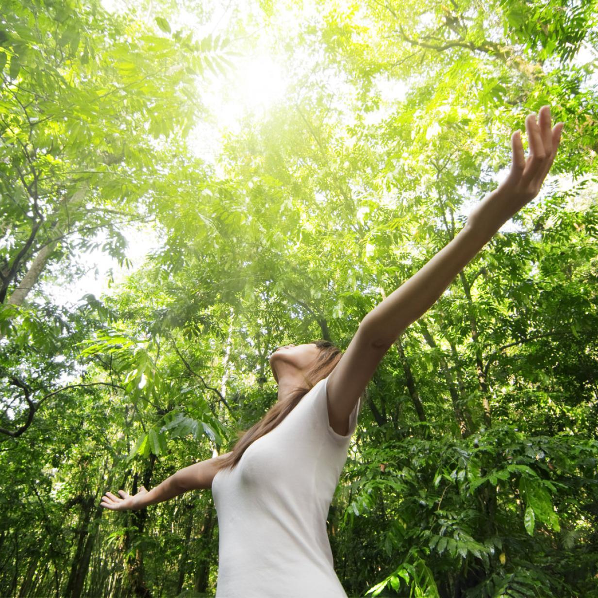 Im Wald baden, bis die Seele grünt: Die besten Tipps rund ums Wochenende!