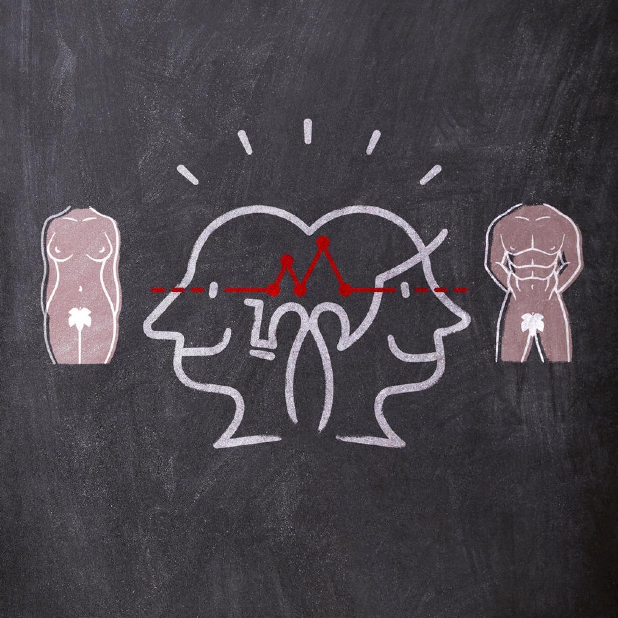 Gehirn männer frauen unterschiede Studie per