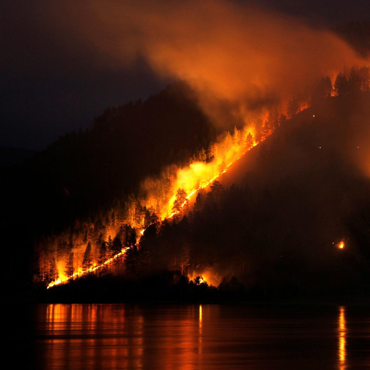 Waldbrände in Sibirien: betroffene Flächen so groß wie Frankreich