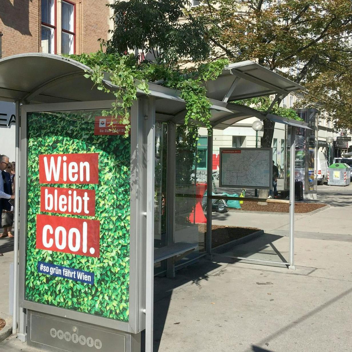 Begrünte Wartehäuschen in Wien: Dekoration oder Notwendigkeit?