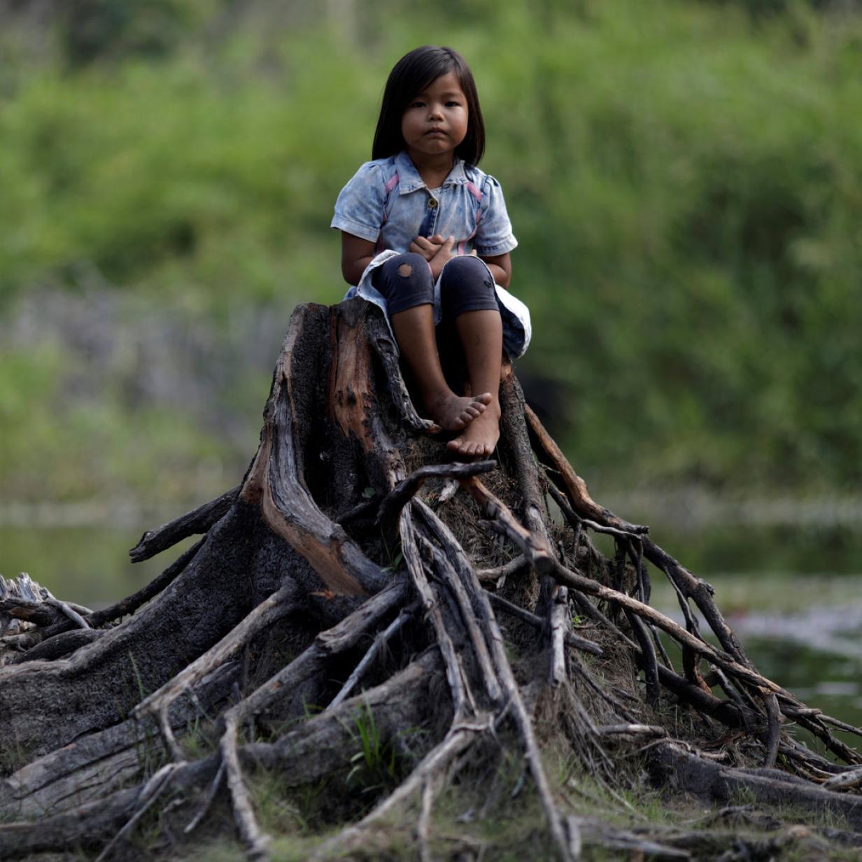 Amazonas-Regenwald: Warum die Klimaanlage der Welt ins Stocken gerät