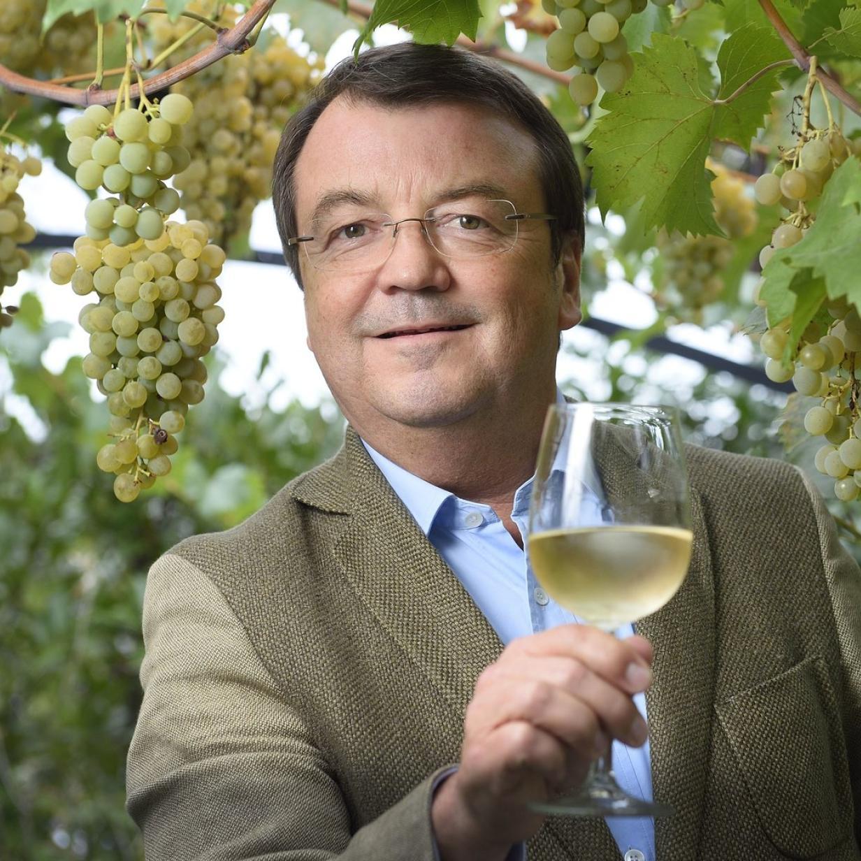 ÖWM-Chef Willi Klinger wird Geschäftsführer von Wein & Co