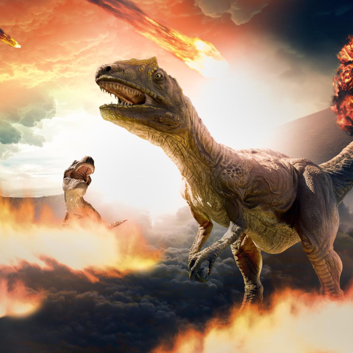 Also doch: Asteroid killte Dinos