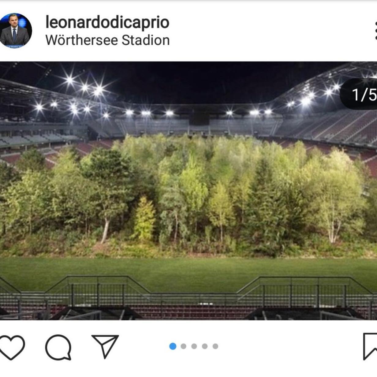 Leonardo DiCaprio macht Stadionwald hollywoodreif und bekommt Einladung