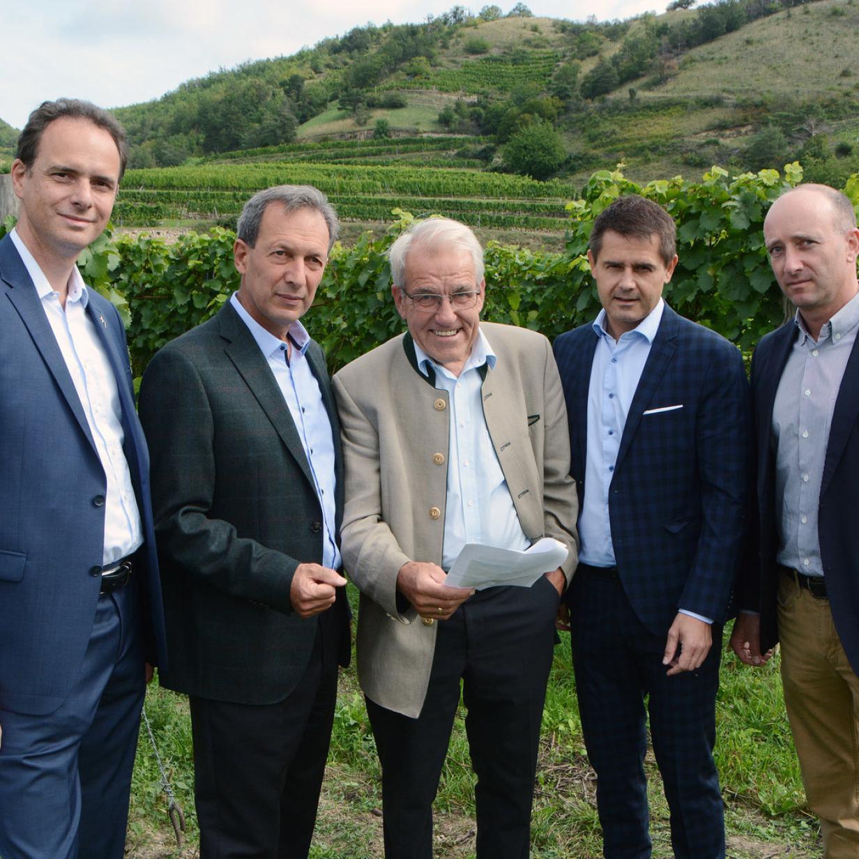 Weingarten soll verbaut werden: Winzer sehen Wachau bedroht