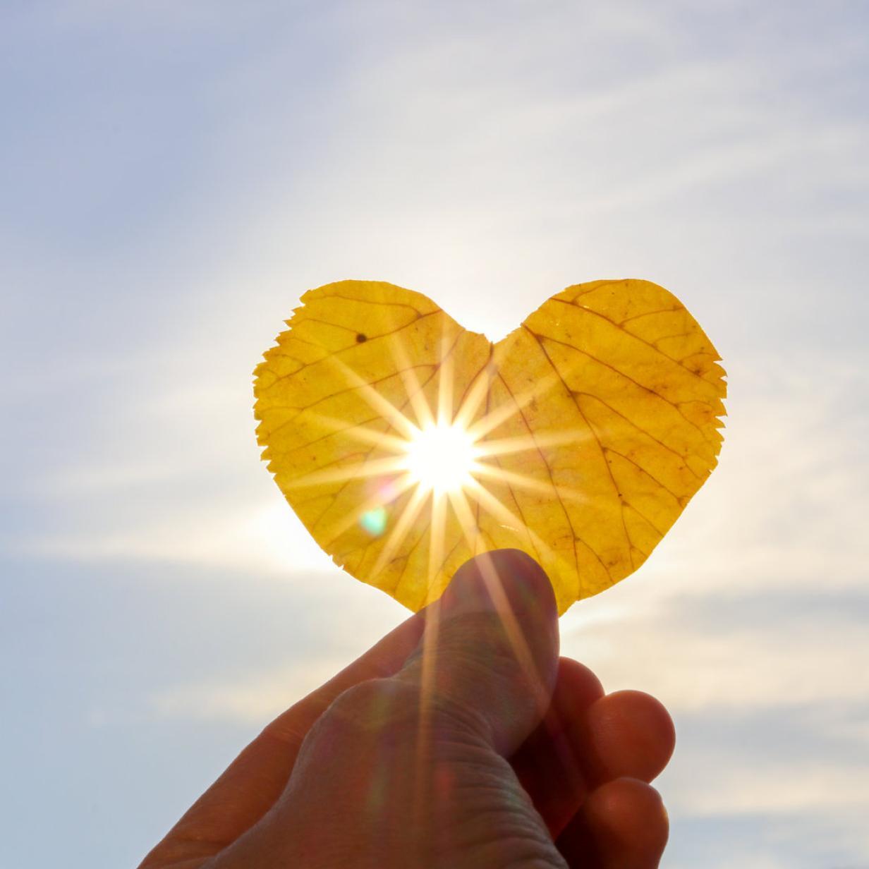 Licht-Blicke: Wie sich die Psyche über die Herbstsonne freut