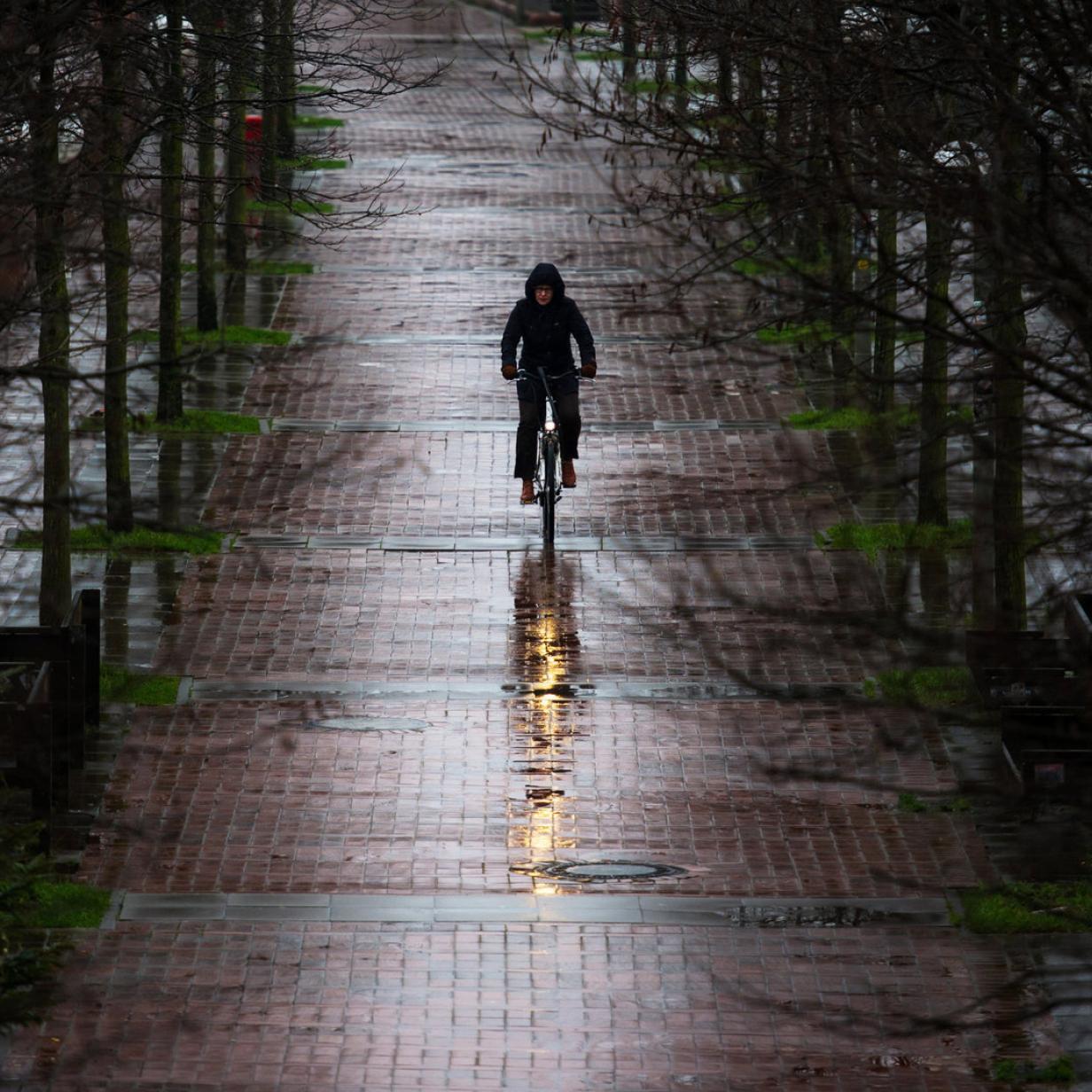 So kommen Sie mit Ihrem Fahrrad unbeschadet durch die kalte Jahreszeit