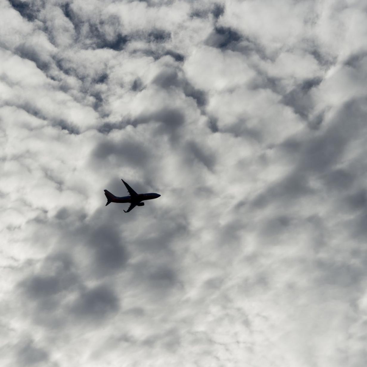 Flüge: Das grüne Gewissen gleich mitbuchen