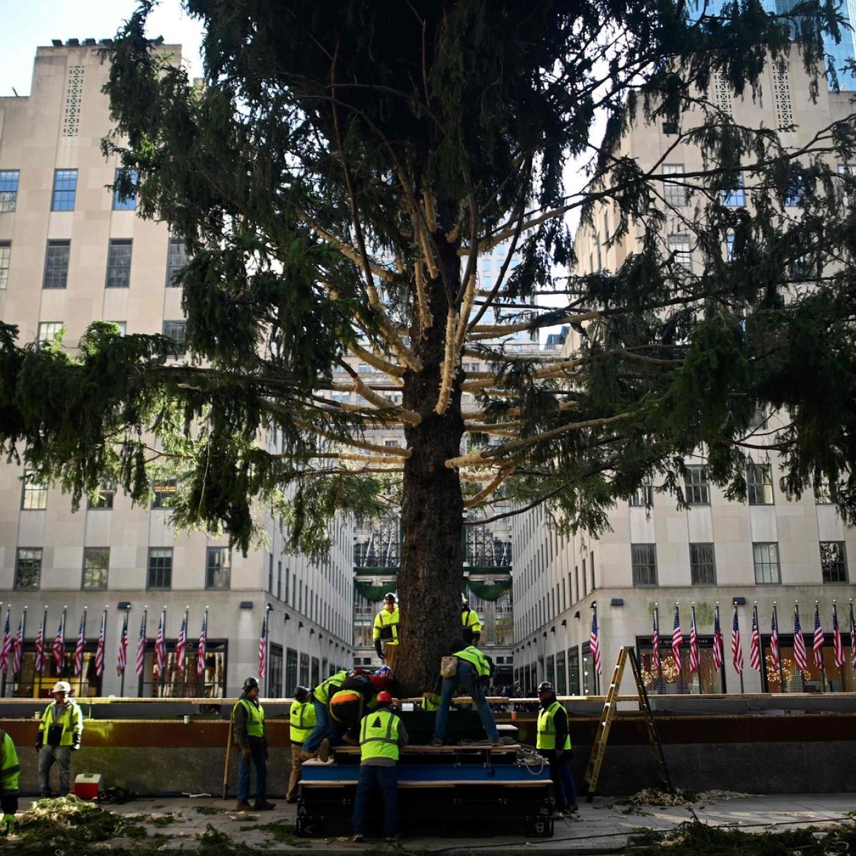 New Yorker Christbaum: Rockefeller Center wird Fußgängerzone