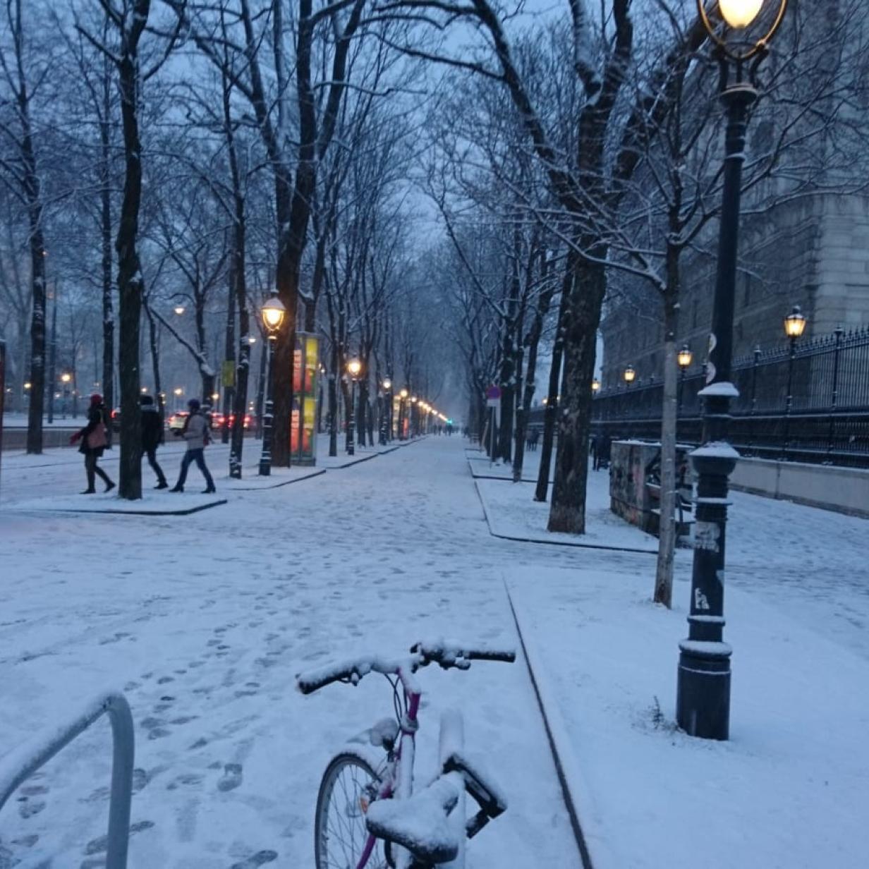 Spät aber doch: Neuschnee auch in Wien