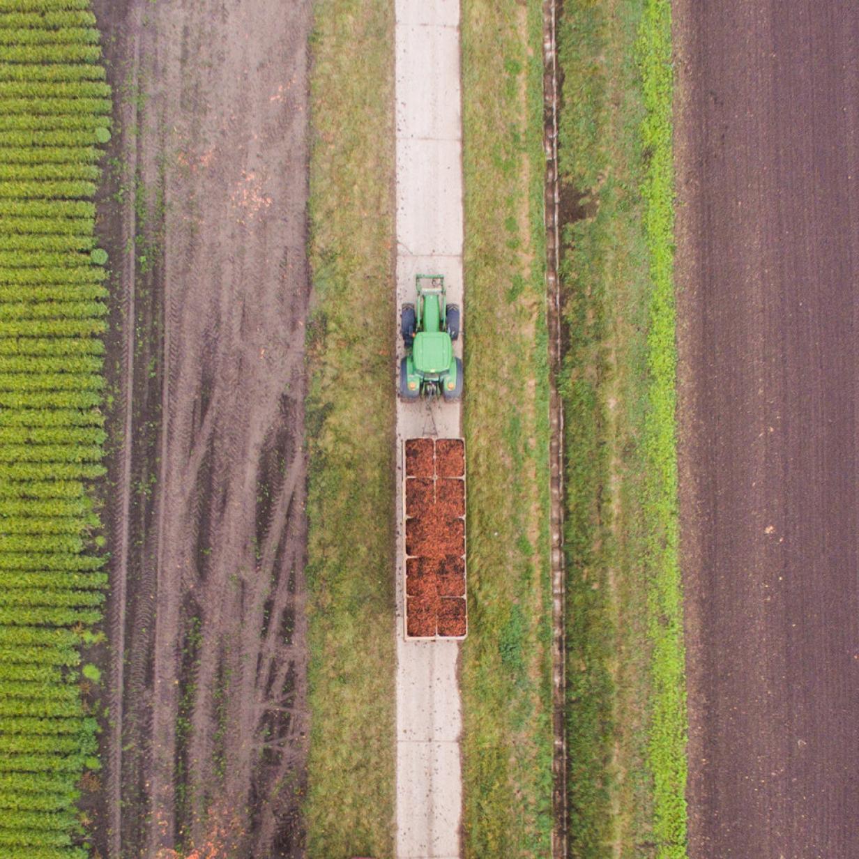 """Streit um EU-Subventionen: """"Green Deal"""" ohne Landwirtschaft?"""