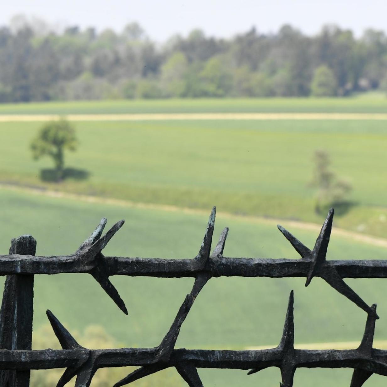 KZ-Massengräber in Oberösterreich könnten übersehen worden sein