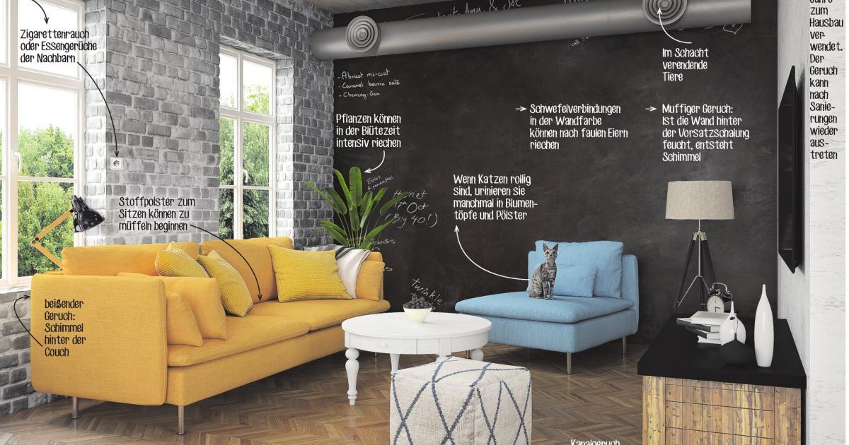 was tun wenn es stinkt. Black Bedroom Furniture Sets. Home Design Ideas