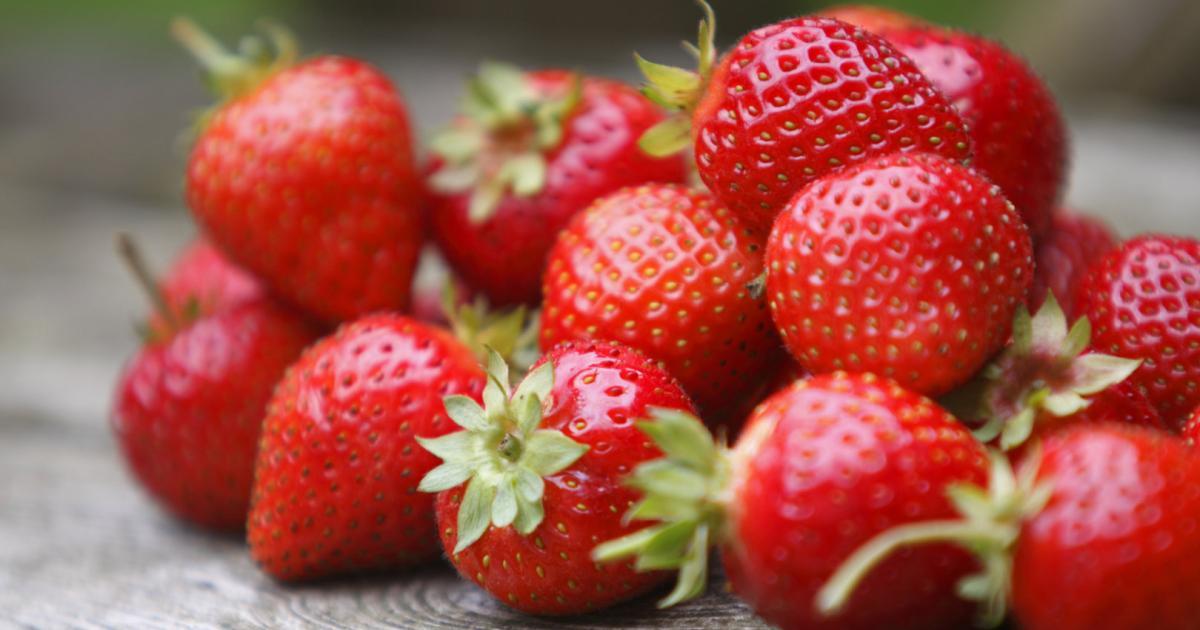 Erdbeeren und Tomaten: Sorte bestimmt Allergiepotenzial
