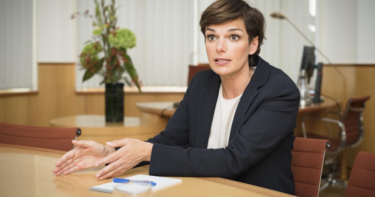 """Rendi-Wagner: """"Über den nationalen Tellerrand schauen"""""""