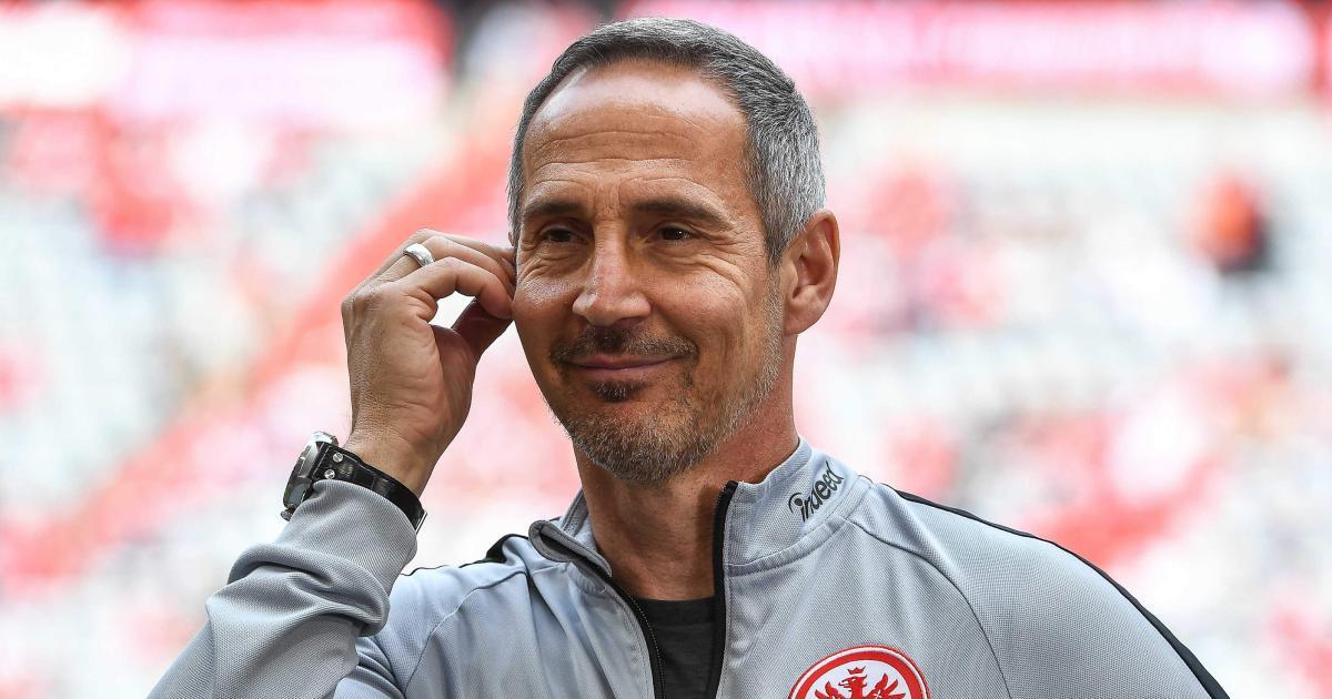 Bundesliga Trainer