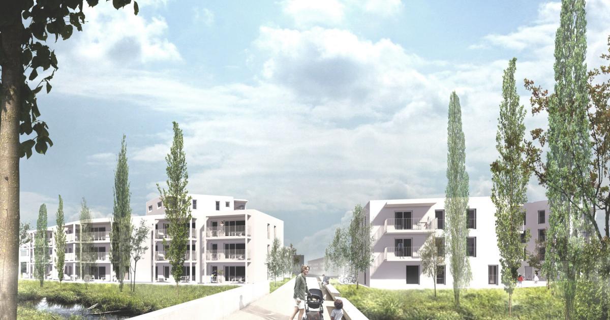 495 Neue Wohnungen Auslanderquote Und Verkehr Als Heisses Thema Kurier At