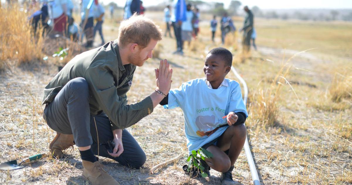 Prinz Harry sprach sich in Botswana für Greta Thunberg aus