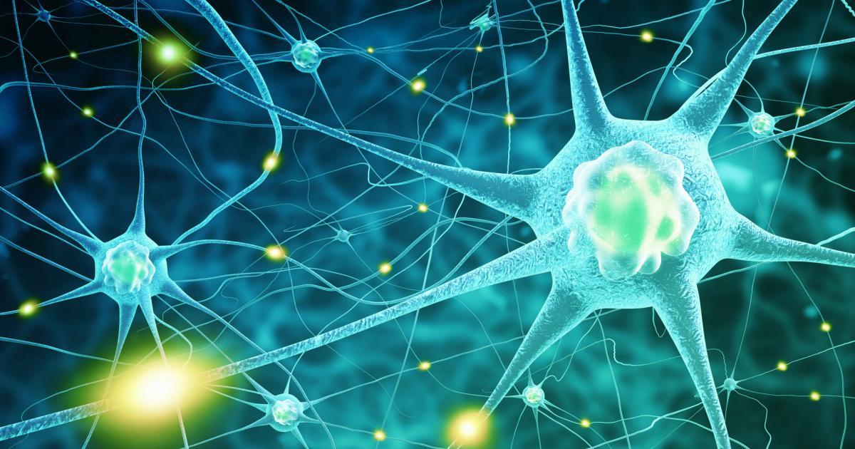 Multiple Sklerose: Welche falschen Vorstellungen oft ihr Bild prägen