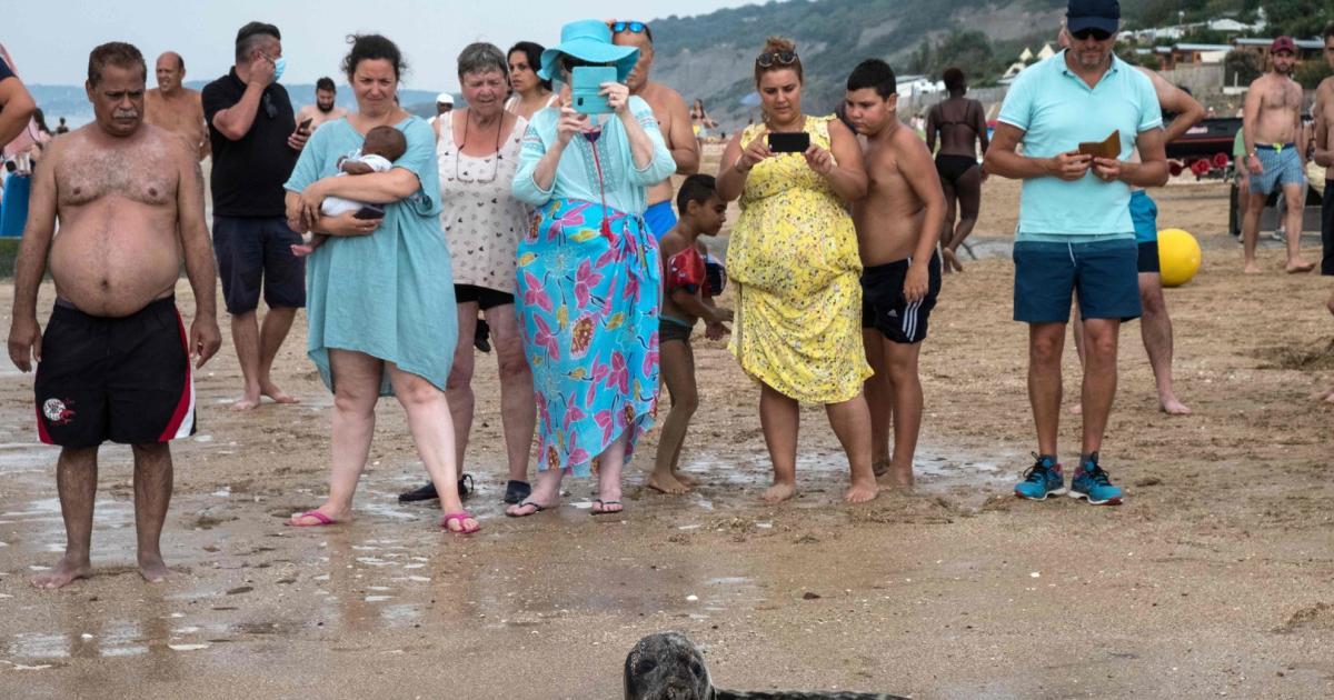 Oben ohne am Strand? Prüde Franzosen greifen durch   kurier.at
