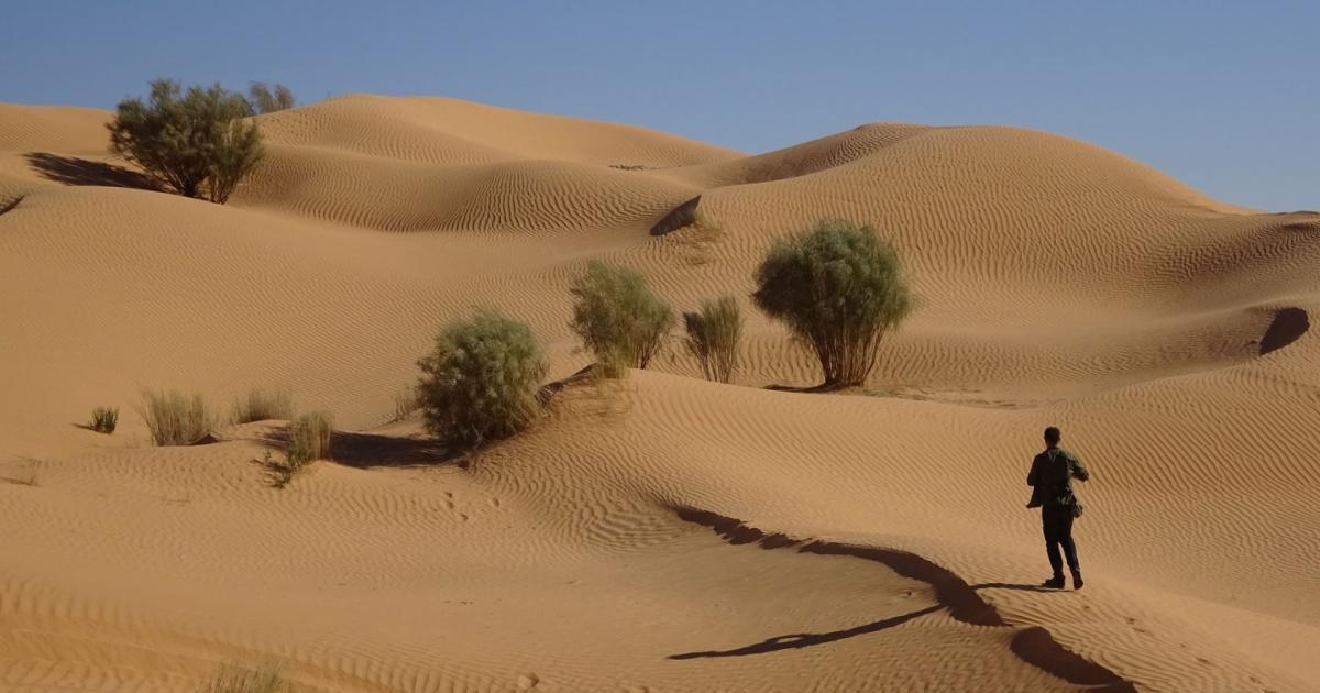 Der Sand und die Stille: Über den Reiz der tunesischen Sahara