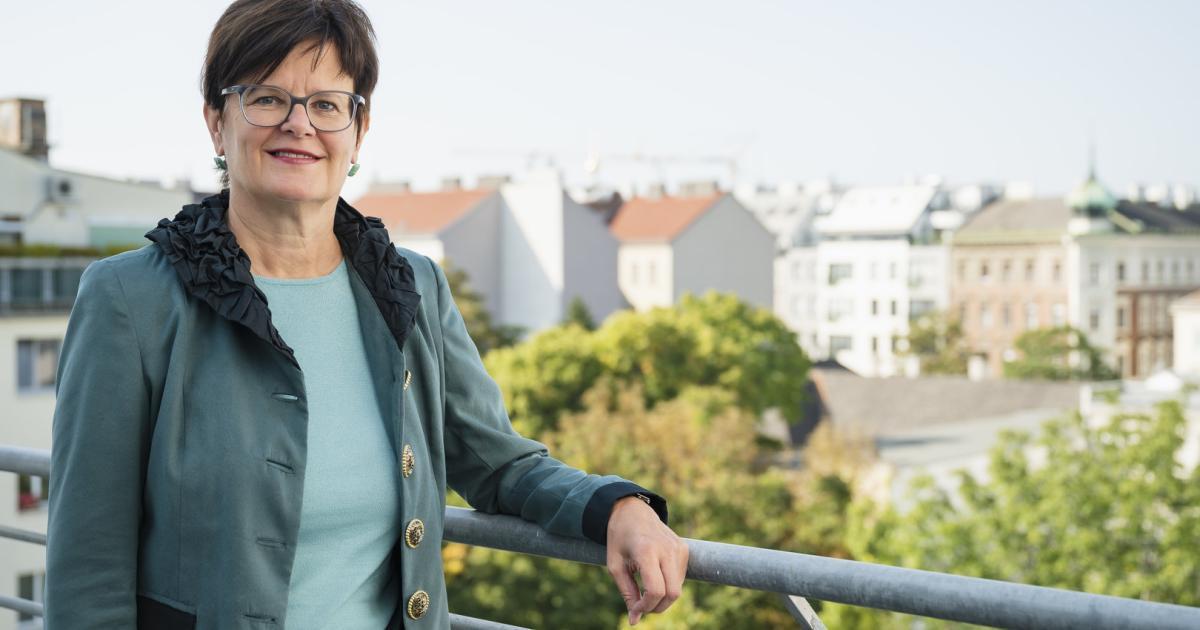 """AMS-Wien-Chefin: """"Personal wird nicht ganz ausreichen"""""""