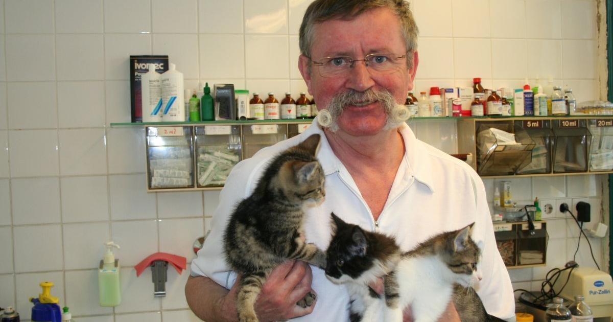 Partnersuche tierarzt
