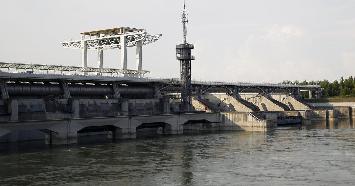 Donau Leiche