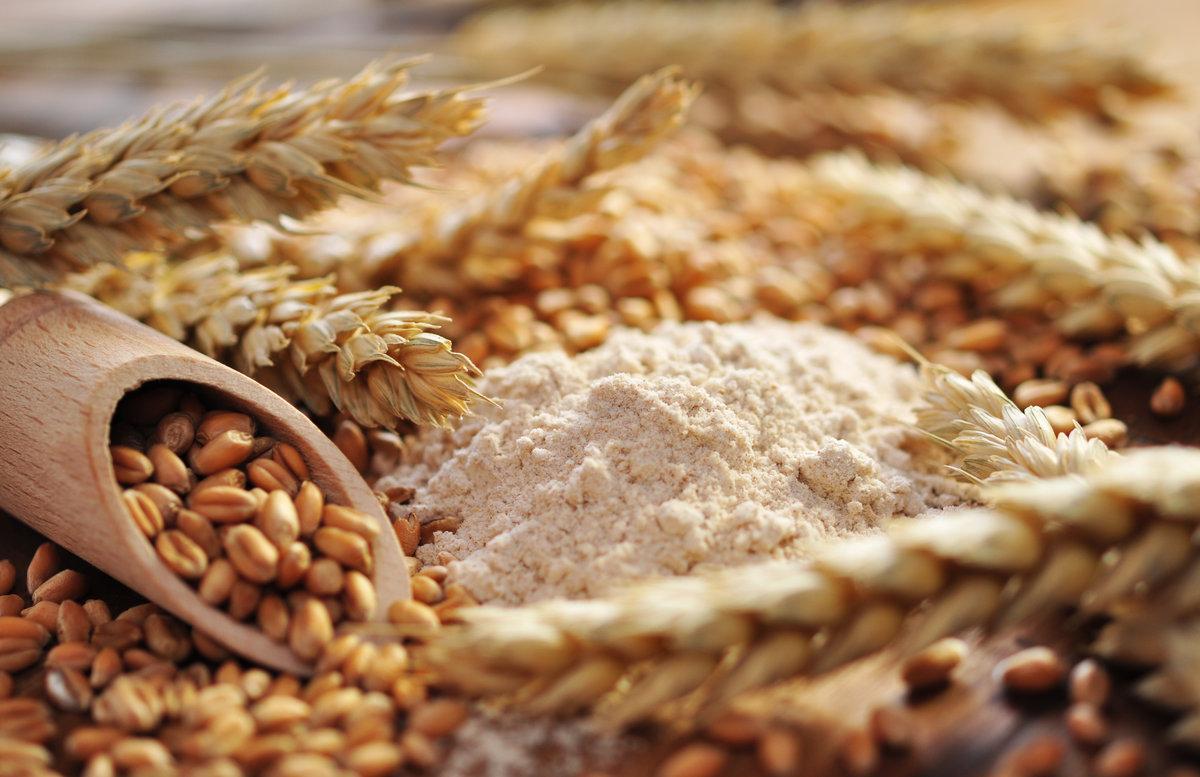 Ist Weizen schädlich?