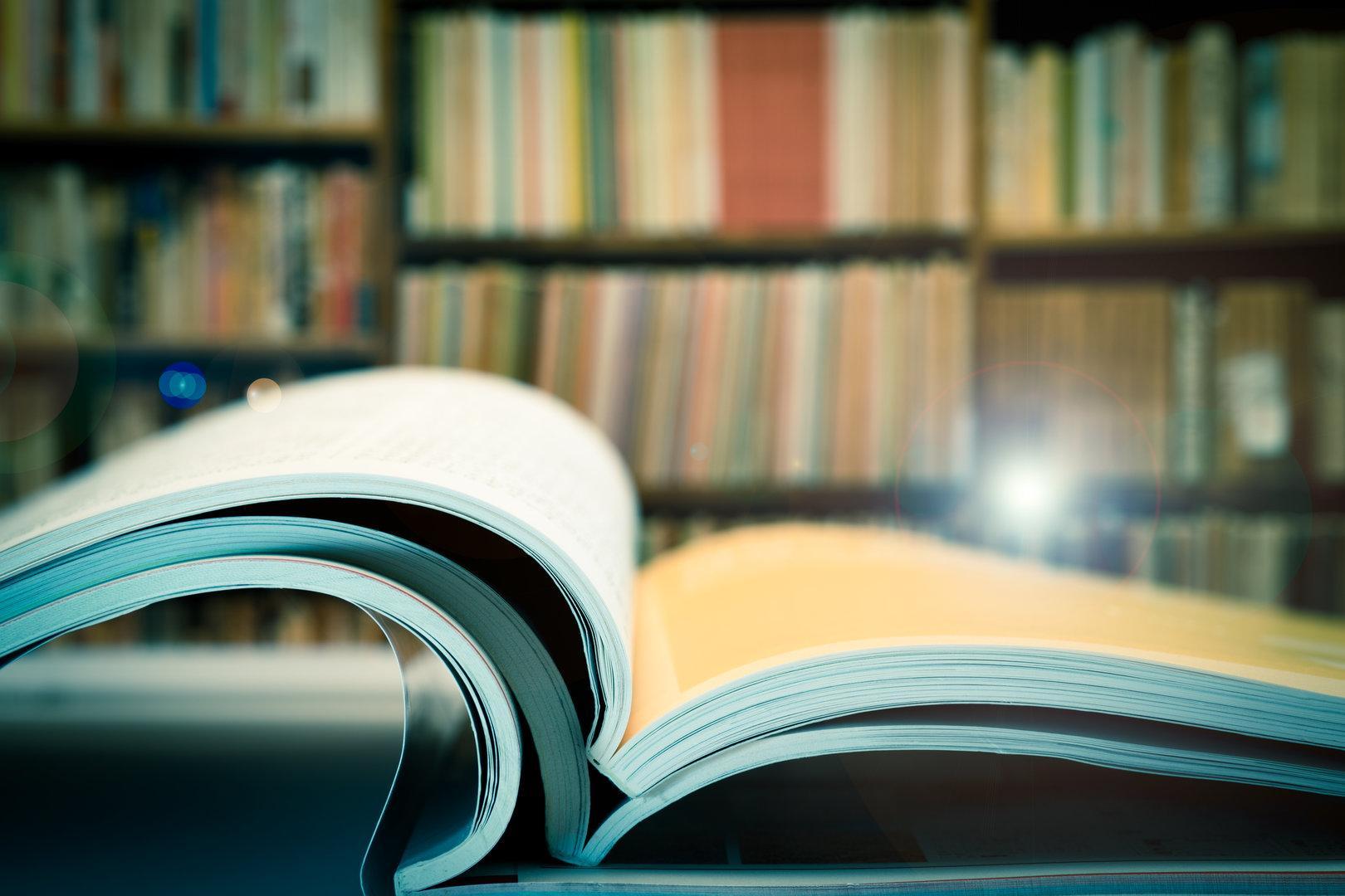 ... und noch 12 Bücher für den Sommer